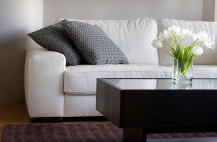 Furniture and Upholstery Cleaning Tumwater WA